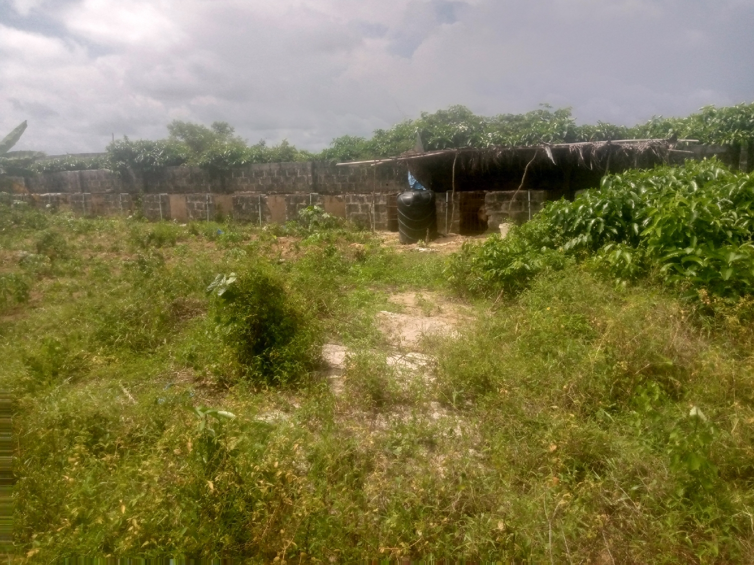 A Plot of Land, Fenced, Running Borehole , and Pig Pen | Land & Plots For Sale for sale in Badagry, Badagry / Badagry